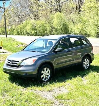 2010 Honda CR-V for sale at Del Sol Auto Mart in Des Plaines IL