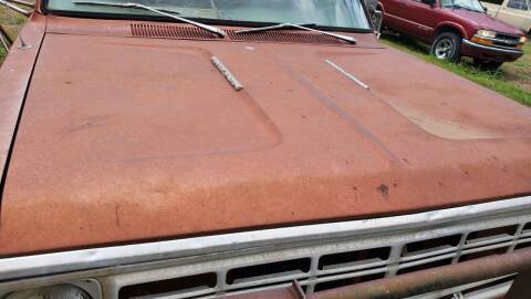 1975 Dodge D100 Pickup for sale at CLASSIC MOTOR SPORTS in Winters TX