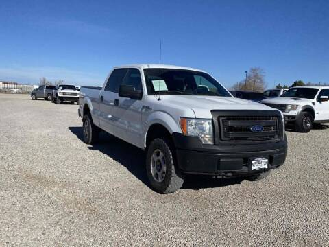 2013 Ford F-150 for sale at BERKENKOTTER MOTORS in Brighton CO