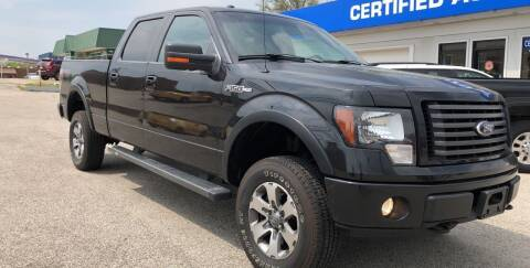 2012 Ford F-150 for sale at Perrys Certified Auto Exchange in Washington IN