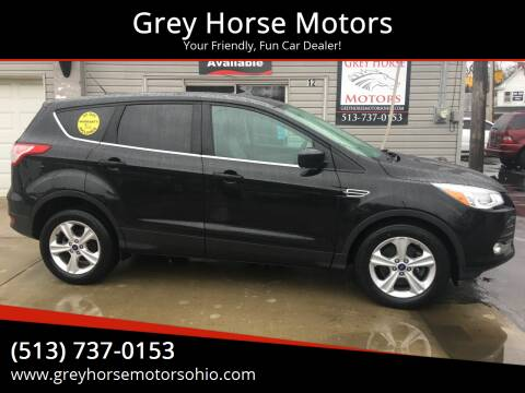 2014 Ford Escape for sale at Grey Horse Motors in Hamilton OH