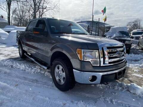 2010 Ford F-150 for sale at Deleon Mich Auto Sales in Yonkers NY