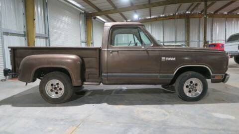 1981 Dodge D100 Pickup for sale at Classic Car Deals in Cadillac MI