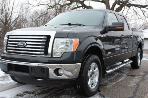 2011 Ford F-150 for sale at S & L Auto Sales in Grand Rapids MI