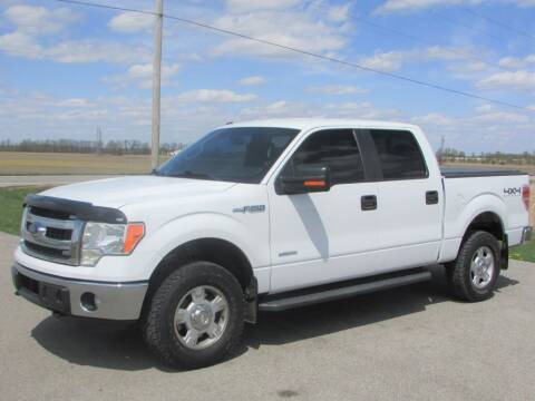2013 Ford F-150 for sale at 42 Automotive in Delaware OH