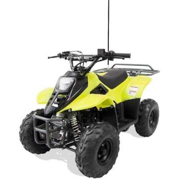 2021 OFFROAD MALL 0999 110cc Youth ATV for sale at A C Auto Sales in Elkton MD