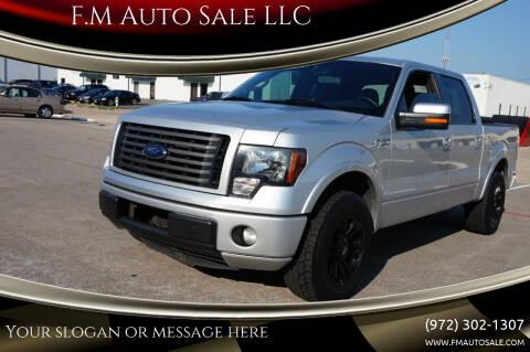 2012 Ford F-150 for sale at F.M Auto Sale LLC in Dallas TX