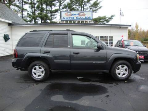 2003 Chevrolet TrailBlazer for sale at G and G AUTO SALES in Merrill WI