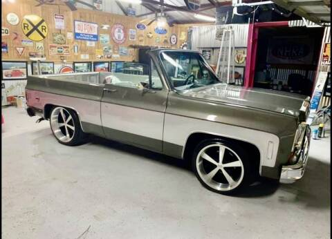 1974 Chevrolet Blazer for sale at Classic Auto Haus in Geneva IL