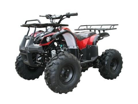 2021 TAO TAO 125D for sale at Advanti Powersports in Mesa AZ