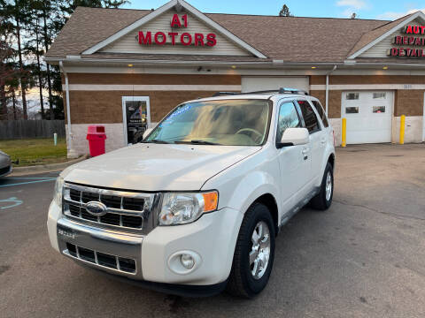 2009 Ford Escape for sale at A 1 Motors in Monroe MI