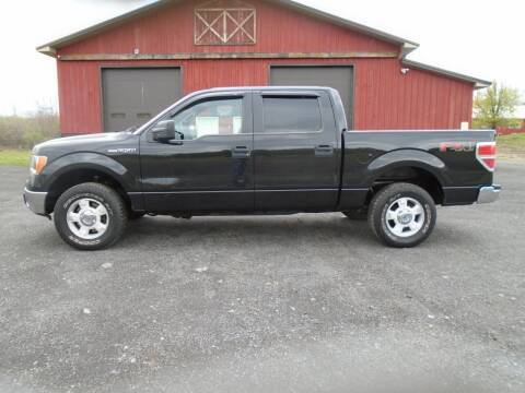 2014 Ford F-150 for sale at Celtic Cycles in Voorheesville NY