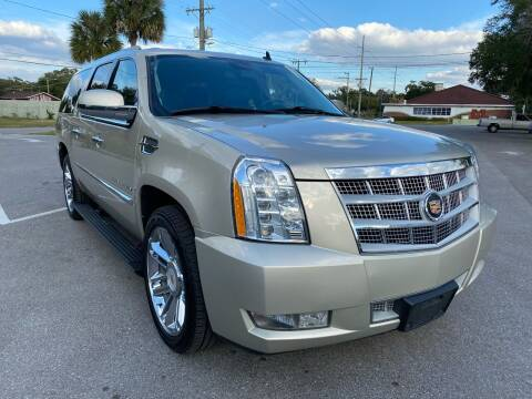 2013 Cadillac Escalade ESV for sale at LUXURY AUTO MALL in Tampa FL