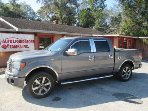 2010 Ford F-150 for sale at Auto Liquidators of Tampa in Tampa FL