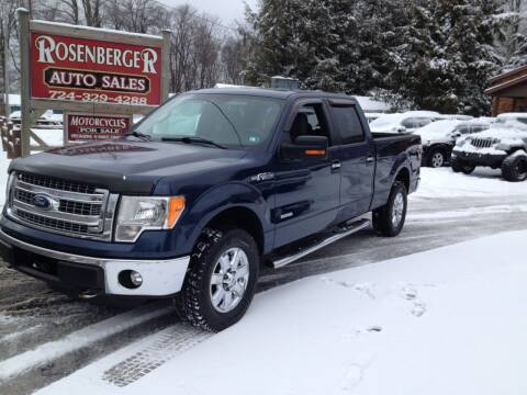2013 Ford F-150 for sale at Rosenberger Auto Sales LLC in Markleysburg PA