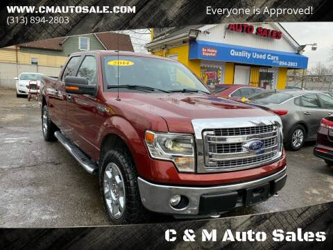 2014 Ford F-150 for sale at C & M Auto Sales in Detroit MI
