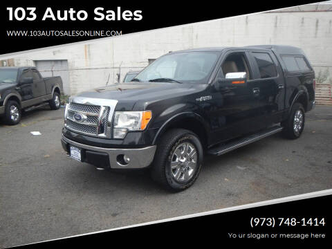 2010 Ford F-150 for sale at 103 Auto Sales in Bloomfield NJ