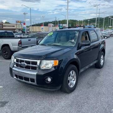 2011 Ford Escape for sale at Millennium Auto Group in Lodi NJ