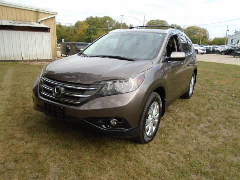 2012 Honda CR-V for sale at Triangle Auto Sales in Elgin IL