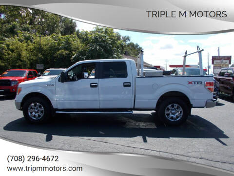 2011 Ford F-150 for sale at Triple M Motors in Saint John IN