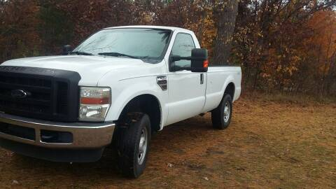 2010 Ford F-250 Super Duty for sale at Expressway Auto Auction in Howard City MI