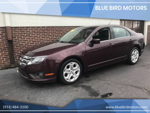 2011 Ford Fusion for sale at Blue Bird Motors in Crossville TN