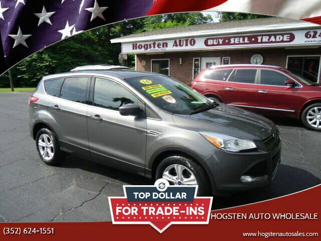 2014 Ford Escape for sale at HOGSTEN AUTO WHOLESALE in Ocala FL