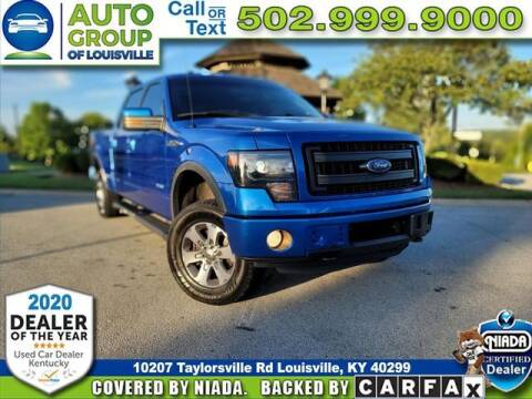 2013 Ford F-150 for sale at Auto Group of Louisville in Louisville KY