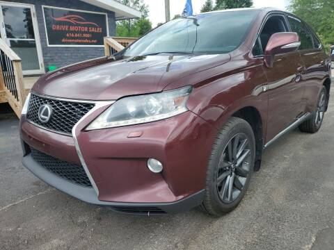2014 Lexus RX 350 for sale at Drive Motor Sales in Ionia MI