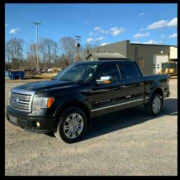 2012 Ford F-150 for sale at BSA Pre-Owned Autos LLC in Hinton WV