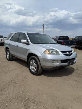 2005 Acura MDX for sale at HORSEPOWER AUTO BROKERS in Fort Collins CO