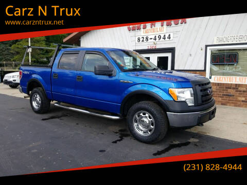 2010 Ford F-150 for sale at Carz N Trux in Twin Lake MI
