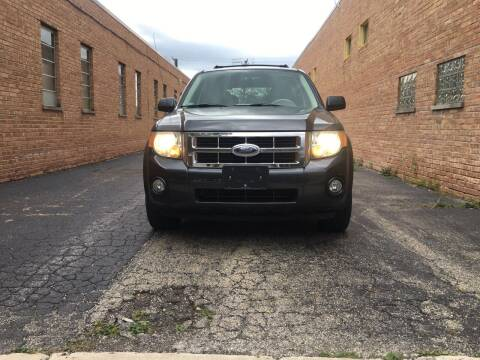 2008 Ford Escape Hybrid for sale at Schaumburg Motor Cars in Schaumburg IL
