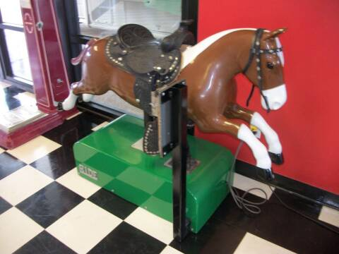 Riding  Horse for sale at Classics Truck and Equipment Sales in Cadiz KY