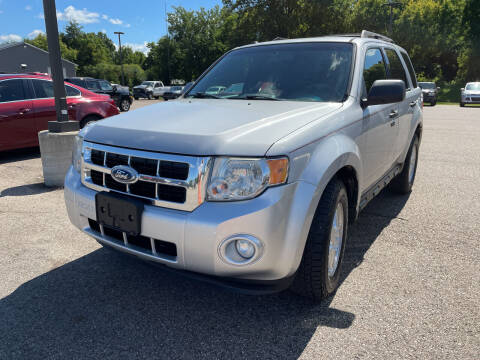 2011 Ford Escape for sale at Blake Hollenbeck Auto Sales in Greenville MI