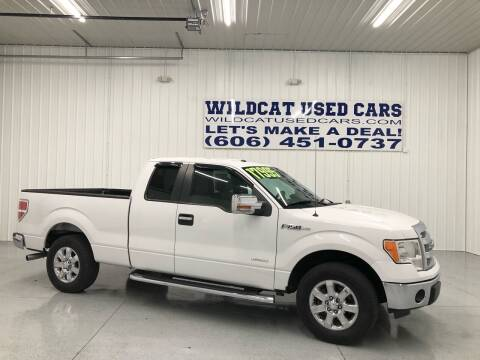 2013 Ford F-150 for sale at Wildcat Used Cars in Somerset KY