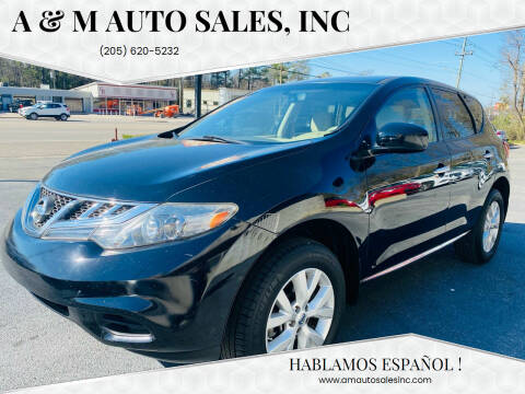 2014 Nissan Murano for sale at A & M Auto Sales, Inc in Alabaster AL