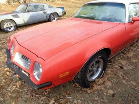 1975 Pontiac Firebird for sale at Classic Car Deals in Cadillac MI
