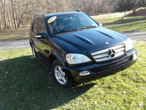 2005 Mercedes-Benz M-Class for sale at ELIAS AUTO SALES in Allentown PA