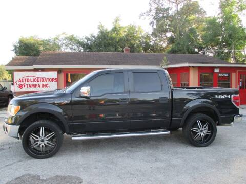 2012 Ford F-150 for sale at Auto Liquidators of Tampa in Tampa FL