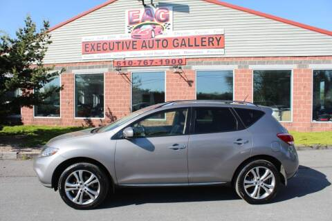 2012 Nissan Murano for sale at EXECUTIVE AUTO GALLERY INC in Walnutport PA