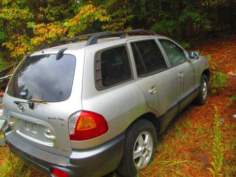 2003 Hyundai Santa Fe for sale at Wright's Auto Sales in Lancaster SC