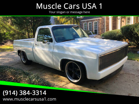 1982 Chevrolet C/K 10 Series for sale at Muscle Cars USA 1 in Murrells Inlet SC