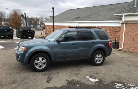 2010 Ford Escape for sale at South Lyon Motors INC in South Lyon MI