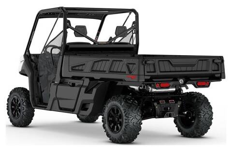 2020 Can-Am defender pro dps hd10