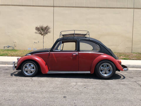 1965 Volkswagen Beetle for sale at HIGH-LINE MOTOR SPORTS in Brea CA