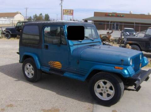 1991 Jeep Wrangler for sale at Classic Car Deals in Cadillac MI