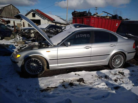 2003 BMW 3 Series for sale at EHE Auto Sales in Marine City MI