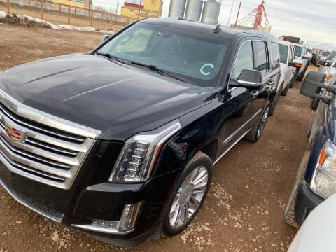 2019 Cadillac Escalade for sale at Truck Buyers in Magrath AB