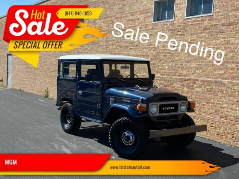 1982 Toyota Land Cruiser for sale at MGM CLASSIC CARS in Addison, IL